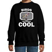 Sweater birds are serious cool zwart kinderen - vogels/ putter vogel trui
