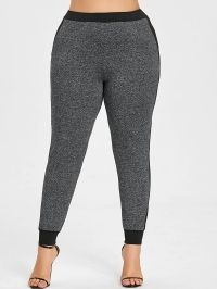 Side Stripe Block Plus Size Sweatpants