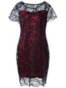 Plus Size Sheath Fitted Lace Dress