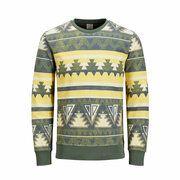 Sweatshirt Native